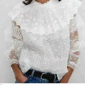 Zara lace scallop blouse